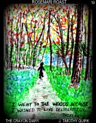 19 walk in the woods
