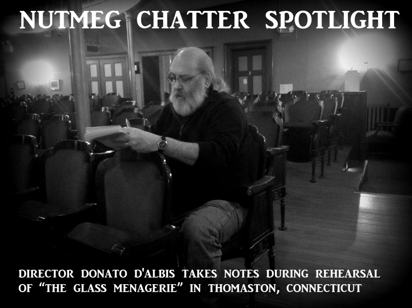 nutmeg chatter spotlight 223